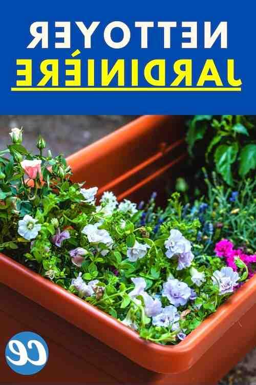 Comment nettoyer des jardinières en béton ?