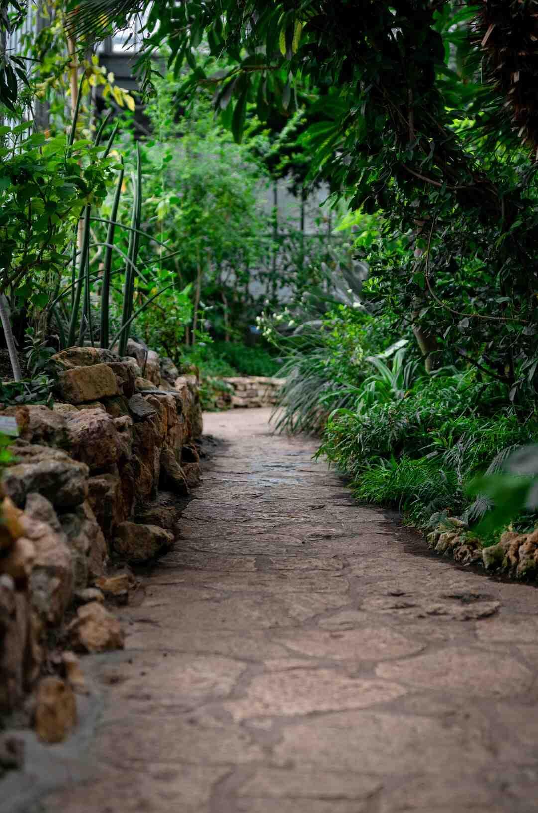 Comment faire un jardin minéral ?