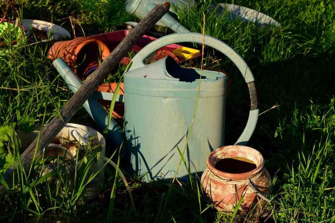 Quel gravier pour un jardin sec ?