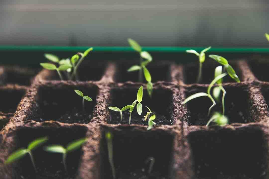 Pierre artificielle pour jardin